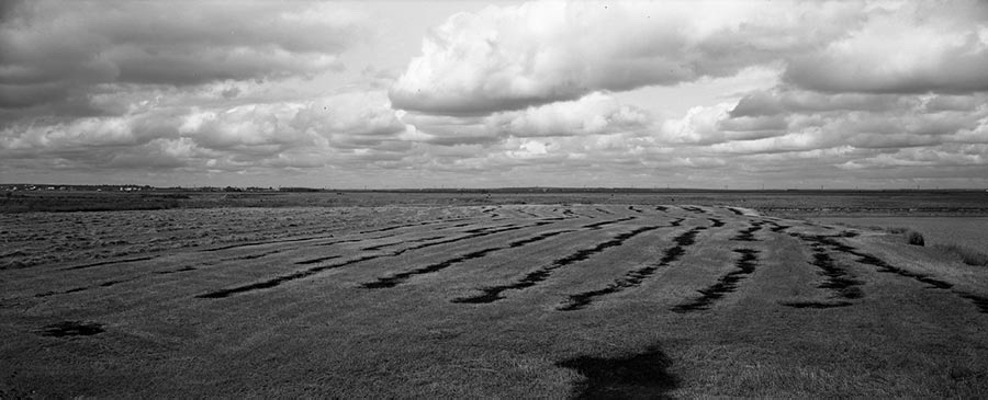 Burnt field, Sackville, 1983