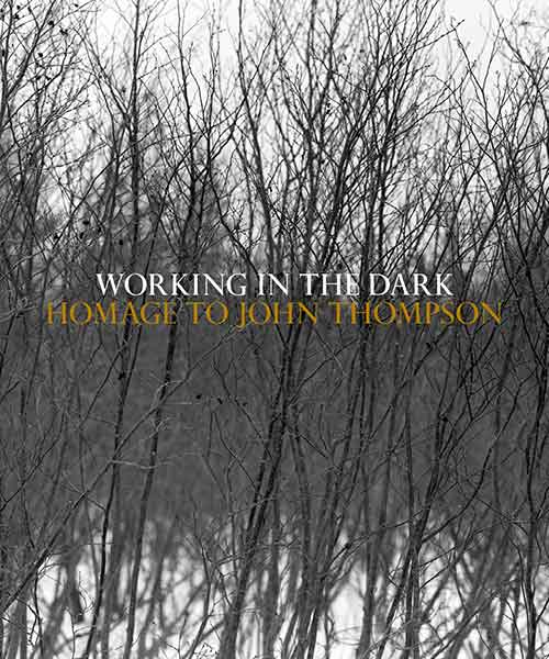 WORKING IN THE DARK AN HOMAGE TO JOHN THOMPSON book cover