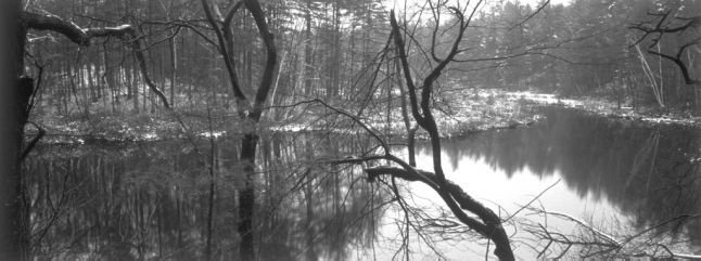 2001–2003 · Walden Pond Revisited